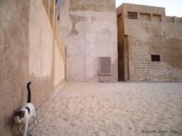 Fattest Cat, Dubai, UAE 2004
