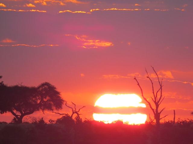 Light and Reflection - Sunset, Savuti, Botswana, May 2016