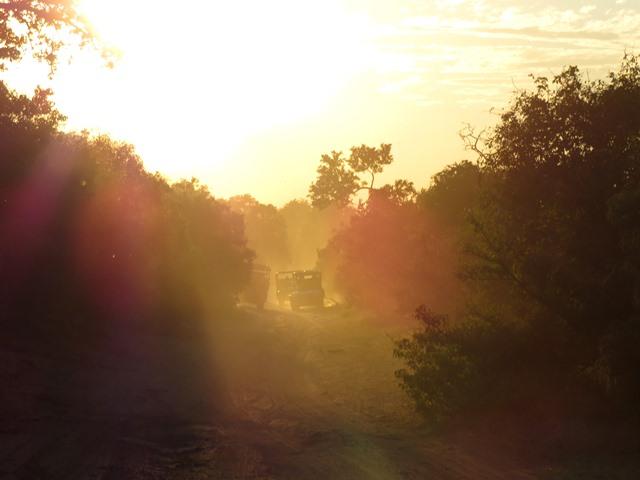 Light and Reflection - Safari vehicles, Chobe, Botswana, May 2016