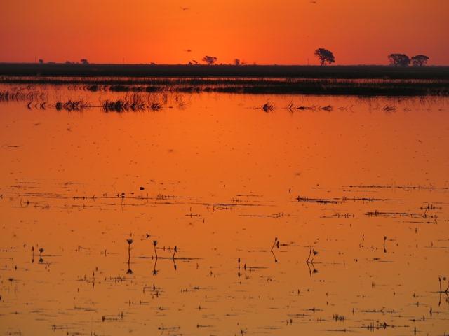 Light and Reflection - Sunset, Chobe, Botswana, May 2016