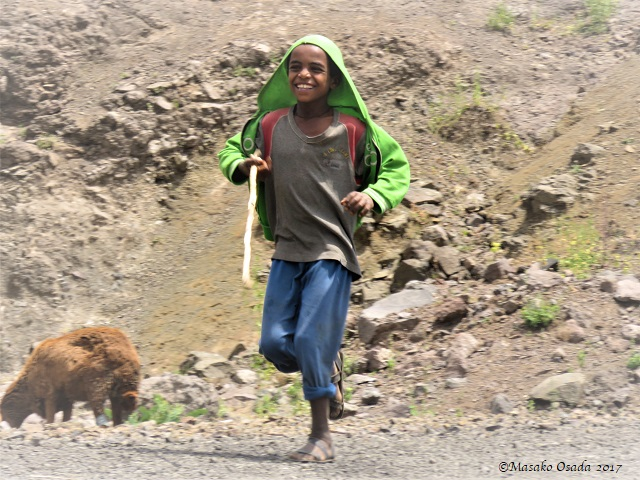 Happy herdboy running along