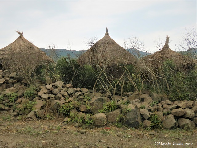 Three houses with thatched-roof