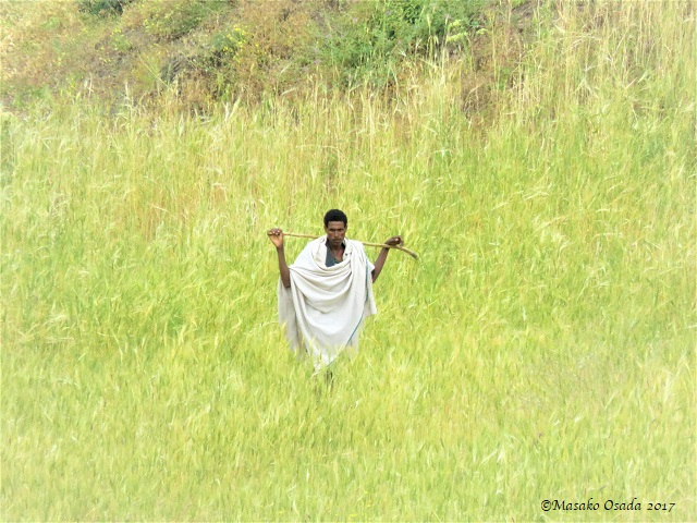 Man walking in the field