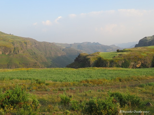 On the way from Debark to Simien Mountains National Park