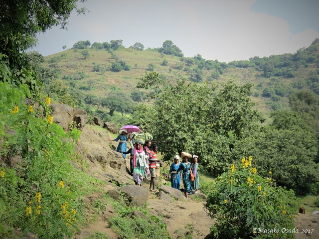 Walk from Tis Abay Town to Blue Nile Falls