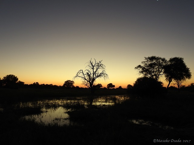 Sunset, Khwai, Botswana, April 2017