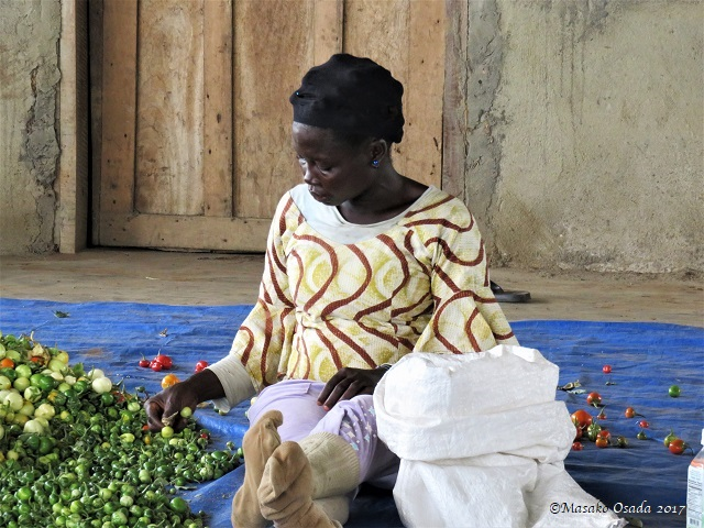 Woman sorting vegetables, Bong, Liberia, April 2017017
