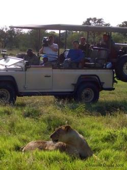 Cameraman at work, Okavango Delta, Botswana