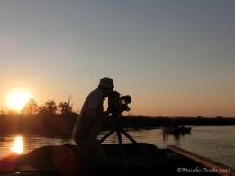 Cameraman at work, Okavango Panhandle, Botswana