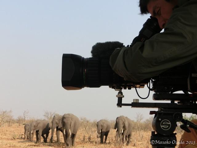 Cameraman at work, Chobe, Botswana
