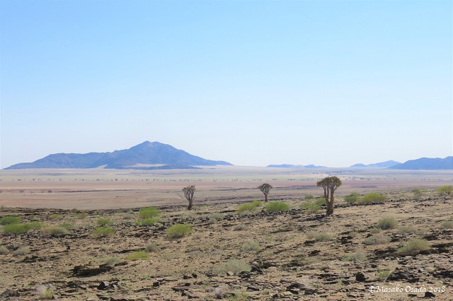 On the way to Walvis Bay, Namibia, April 2018