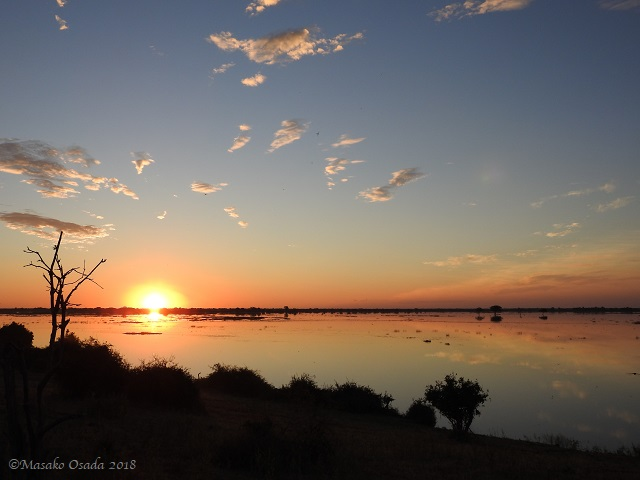 Sunset, Chobe, Botswana, May 2018