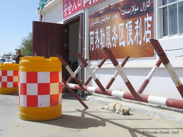 Service station between Aksu and Khotan, Xinjiang, September 2018