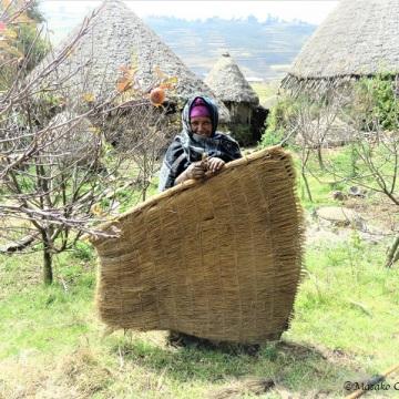 Woman holding Guassa grass raincoat. Laydarcha village, GCCA, Ethiopia, November 2018