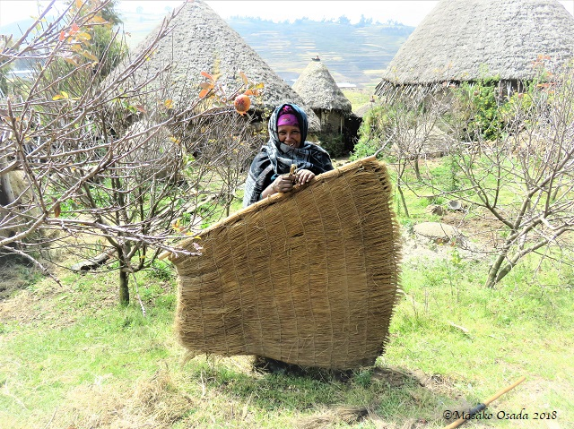 Woman holding Guassa grass raincoat. Laydarcha village, GCCA, Ethiopia, November 2018
