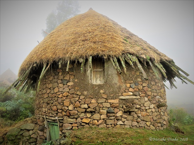 Old house thached with Guassa grass. Egora village, GCCA, Ethiopia, November 2018