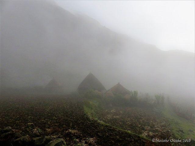 Village in a mist. Egora village, GCCA, Ethiopia, November 2018