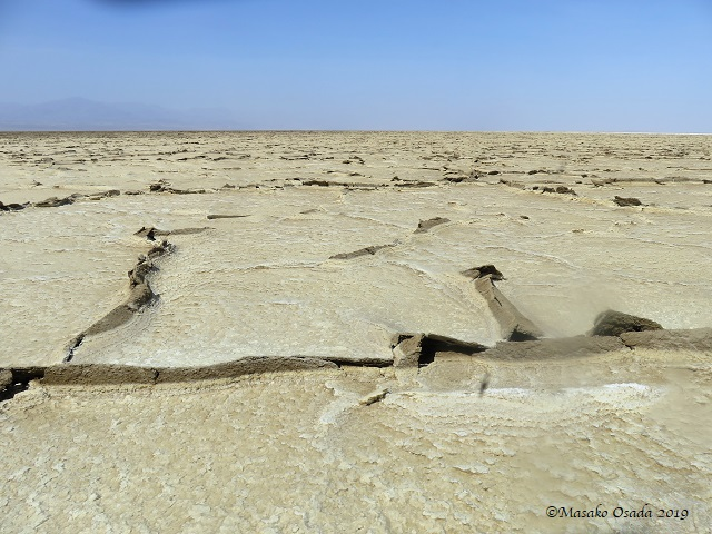 Salt flats, Dallol, Ethiopia, January 2019