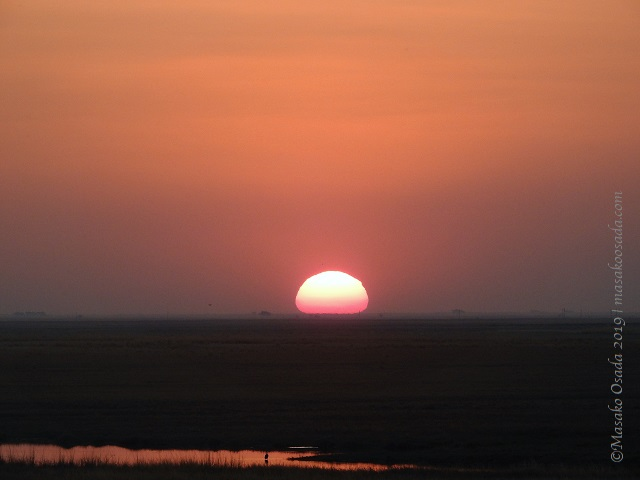 Sunset over river, Chobe, Botswana, August 2019