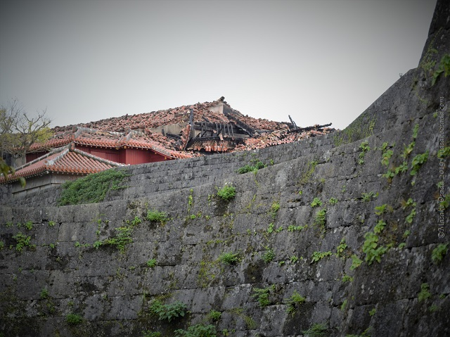 Ruined roof of Shuri Castle, Naha, Okinawa, November 2019